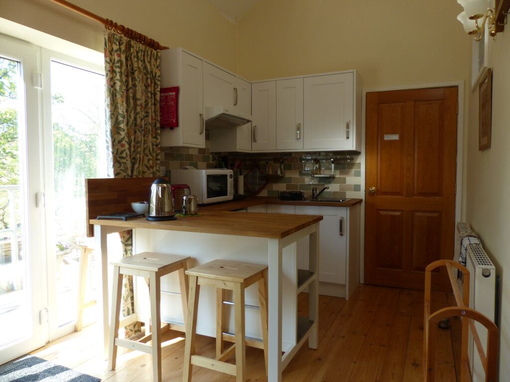 Kitchen area with sink, fridge, microwave, hob and toaster.